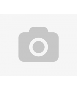 MotoTRBO DM4600 CONNECT PLUS GA01166AA (GA01166AA)